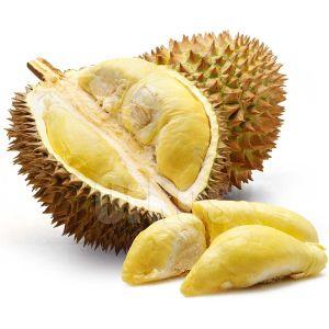 Food Dictionary - Fruits - Durian Fruit