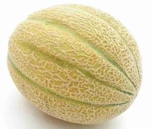 Muskmelon - Biocarve Seeds
