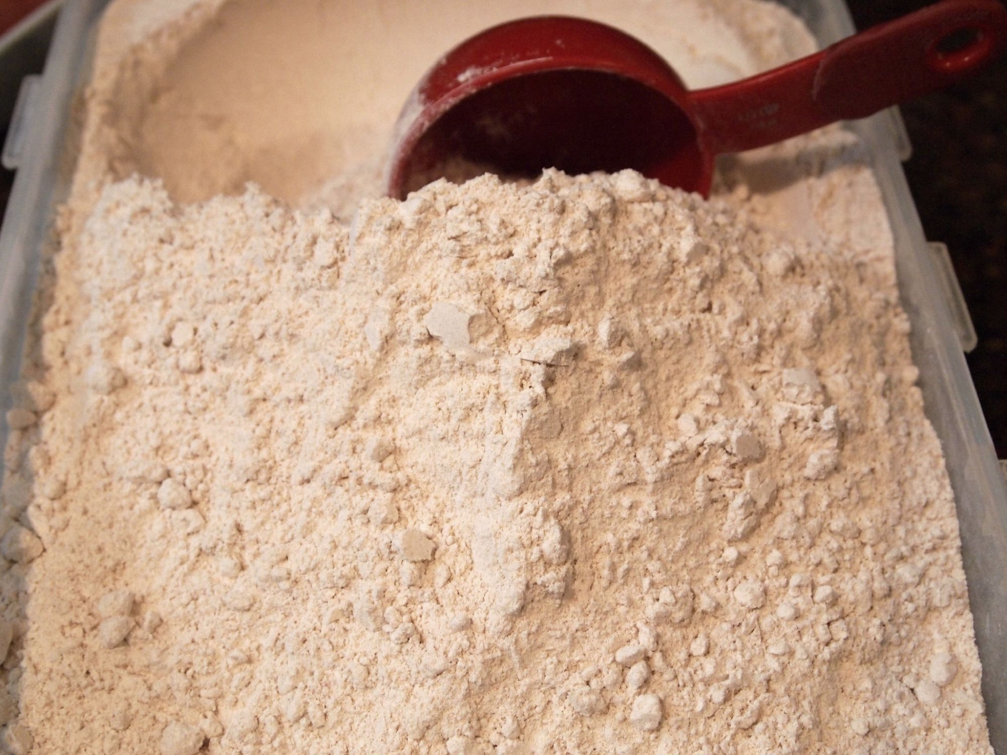 Whole-Wheat Flour