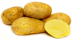 Carola Potato
