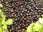 Jamun fruits